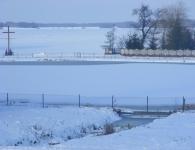 Ilustracja do Paprotnia zimą